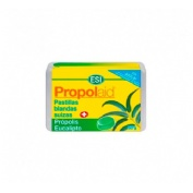 Propolaid pastilla blanda (eucaliptus 50 g)